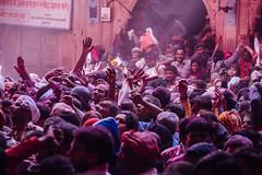 Gulal Holi Crowd in Shri Banke Bihari Mandir (AdamCohn) Tags: abeer adamcohn bankebiharimandir hindu india shribankeybiharimandir vrindavan gulal holi pilgrim pilgrimage अबीर गुलाल होली