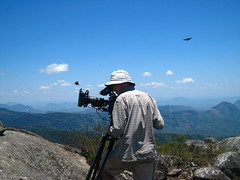 BBC NHU filming butterflies - Justin Maguire