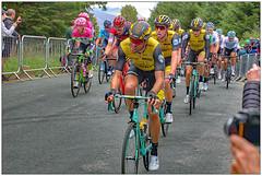 Hard effort (bob the bolder) Tags: uk cumbria whinlatter ovo tour britain cycle bike race stage6 peloton lottonljumbo