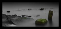 After the sun has gone (WibbleFishBanana) Tags: rügen ruegen ostsee baltic sea water concrete weed green wood rock deutschland germany palmerort mecklenburgvorpommern