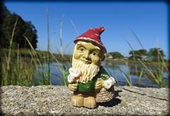 DSCN3114 (DianeBerky19) Tags: nikon coolpixp900 summer estuary marshes lowtide gnome