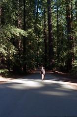 Scan-180919-0013 (alberthuynhphoto) Tags: big basin redwoods redwood state park 35mm fujifilm fuji superia 200 iso film nikon f3