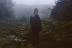 Perseids morning after (DDOOMMMMOORREE) Tags: dommoore portrait dartmoor nationalpark vsco explore rain misty sigmaart
