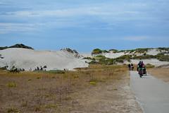 Zeeland Duins #1 (zebzebzeb) Tags: netherlands rotterdam maasvlakte duins