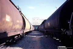 3652 WA grain unload and NSW wagons loading CBH Kwinana 6 May 1983 (RailWA) Tags: railwa philmelling westrail 1983 kwinana cbh nsw grain wagons