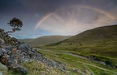 Strath Dearn. (Gordie Broon.) Tags: strathdearn coignafearn landscape scottishhighlands rainbow lonetree riverfindhorn paysage scotland schottland ecosse scenery paisaje escocia scenic dalbeg coignafearnforest coignafearnlodge scozia rio hills flod heuvels collines colinas summer hugeln gordiebroonphotography tomatin landschaft coignascallan monadhliathmountains 2018 sonya7rmkii sonyilce7rm2 sonyzeiss1635f4lens walk track geotagged