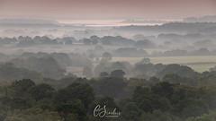 Mist near Corfe Castle (C Sinclair) Tags: corfecastle dorset mist mistysunrise mistymorning mistyfields poole pastelcolours