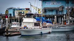Pillar Point Harbor 06 (CDay DaytimeStudios w/1,000,000 views) Tags: beach boats ca california clouds coastline halfmoonbayca highway1 morningovercast ocean pacificcoast pacificcoasthighway pillarpoint pillarpointharbor water wharf yachts