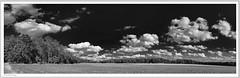 20180907-Emkum-Panorama-01-Rahmen-sw-kl (fredericfromage) Tags: sw bw monochrom wolken himmel felder wald bäume münsterland panorama pentaxflickraward pentaxart