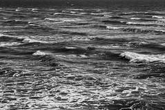 High Contrast Waves (|Sarah|) Tags: australia blackandwhite blackwhite bnw canon1200d contrast highcontrast largsbay photography southaustralia surf surfsup swell waves