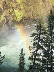 YELLOWSTONE NATIONAL PARK (teddybarb) Tags: waterfall rainbow yellowstonenationalpark frankkelsey