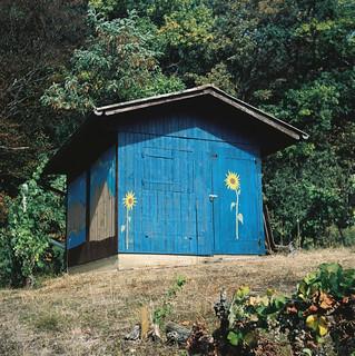 Blaubau