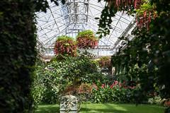 Longwood Gardens (Tom Ipri) Tags: longwoodgardens flowers plants canoneos5dmarkiv