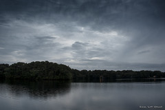Pine Lake Twilight (scottnj) Tags: 365the2018edition 3652018 day260365 17sep18 twilight scottnj scottodonnellphotography lake water pinelake pinelakepark manchester nj newjersey oceancounty trees sky clouds dramatic drama