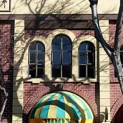 moon's (msdonnalee) Tags: facade facciate fachada façade barebranches pub shadow tree window janela ventana fenster finestra awning brick brique