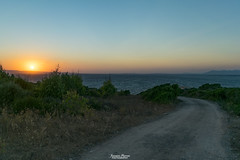 La strada verso il tramonto (Francesca Murroni ┃Wildlife Photographer) Tags: sunset evening sun sky trees landscapes sea tramonto paesaggi alberi estate