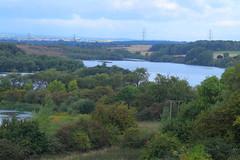 _MG_0161 (Yorkshire Pics) Tags: 0909 09092018 9thseptember 9thseptember2018 castleford fairburnings rspbfairburnings