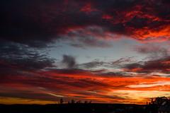 Himmlisches Abendrot (Deutscher Wetterdienst (DWD)) Tags: himmel sky wolken clouds abendrot eveningred abendstimmung eveningatmosphere colours farben rot red
