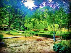 Forest Research Institute Malaysia (FRIM), 68100 Kuala Lumpur, Federal Territory of Kuala Lumpur https://goo.gl/maps/SW9W2sL8BJ32 #大自然 #nature #自然 #طبيعة #자연 #Alam #природа #ธรรมชาติ #kualalumpur #travel #holiday #traveling #trip #Asian #旅行 #度假 #亞洲 #馬來西亞 (soonlung81) Tags: kapong trip طبيعة natural kualalumpur 自然 วันหยุด vacanza malaysia путешествие resa vakantie 휴일 natuurlijk 馬來西亞 frim alam 旅行 reise 馬來西亞旅行 nature природа semester naturel naturale ธรรมชาติ asia natürlich 여행 asian voyage 大自然 reizen 度假 traveling urlaub 자연 ホリデー การเดินทาง holiday праздник natuur vacances fiesta viaggio 亞洲 viaje travel