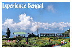 Experience Bengal - Darjeeling Himalayan Railway (pallab seth) Tags: darjeelinghimalayanrailway worldheritagesite toytrain dhr railways mountain unesco darjeeling tour travel tourism bengal india