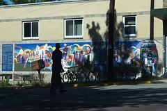 street shadows (humbletree) Tags: madisonwisconsin september shadows street