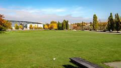 Passerelle du Graoully (Metz, France)-105 (MMARCZYK) Tags: metz grandest france moselle 57 parc de la seille pont ost bridge passerelle kosmi terrell ouvrage dart ingenierie paysage