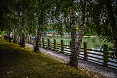 Marina Park - Fort Langley (SonjaPetersonPh♡tography) Tags: langley fortlangley townshipoflangley bc britishcolumbia canada town tourists shops gallery restaurants quaint village antiques gloverrd fraserriver parks marinapark park shoreline riverfront river viewpoints