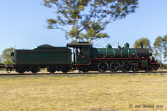 1079_Lane Rd_Carnival of Flowers_wm (JLT007) Tags: steam steamtrain train locomotive railway rail ipswich queensland