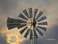 Windmill at PCC (wfgphoto) Tags: pcc windmill bird blades gears sky sunrise
