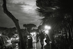 L1015297 (Pierre Wayser) Tags: 2009 italia ischia leicam8elmarit28 walknowtalknow