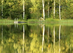 The silence of a small pond (irio.jyske) Tags: naturephoto nature naturepic naturephotograph naturescape naturepictures naturephotos naturephotographer naturepics natural nice beauty beautiful photographer photograph photos pics landscapephotograph landscape lanscape landscapepic landscapephotographer lake landscapes landscapephotos lakescape landscapepics trees forest pier boat colors green white