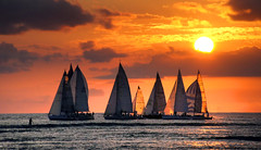 Hawaiian Sunset. (Bernard Spragg) Tags: hawaii island evening sailing sony travel vacation holiday soe fabuleuse