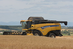 New Holland CX8070 Elevation Combine Harvester cutting Winter Barley (Shane Casey CK25) Tags: new holland cx8070 elevation combine harvester cutting winter barley nh cnh yellow newholland leamlara grain harvest grain2018 grain18 harvest2018 harvest18 corn2018 corn crop tillage crops cereal cereals golden straw dust chaff county cork ireland irish farm farmer farming agri agriculture contractor field ground soil earth work working horse power horsepower hp pull pulling cut knife blade blades machine machinery collect collecting mähdrescher cosechadora moissonneusebatteuse kombajny zbożowe kombajn maaidorser mietitrebbia nikon d7200