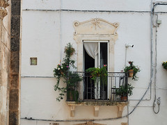 Un balcone della Città Bianca  - A balcony in the White Town (Ola55) Tags: ola55 italy ostuni puglia balcone balcony finestra window fiori flowers piante plants tenda curtain bianco white lacittàbianca italians hcity