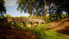 Duno-aquaduct (www.petje-fotografie.nl) Tags: heveadorp renkum bos brug petjefotografie wwwpetjefotografienl duno aquaduct