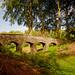 Duno-aquaduct