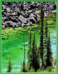 Emerald Waters in the Rockies (robinb44) Tags: canadianrockies kootenayriver alberta britishcolumbia firtrees
