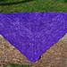 Immunofixation shawl