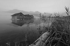 Seeblick (flori schilcher) Tags: schilcher kochelsee bootshäuser see nebel