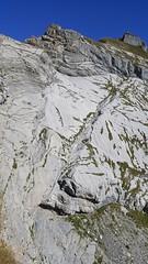 ascent to Brünighaupt T6 (formilock) Tags: brünighaupt haupt obwalden melchseefrutt melchsee alpen alpi alpes alps alpine bergsteigen berge mountains montagnes mountain montagne mountaineering switzerland swiss swissmountains zentralschweiz pbpolarbear pbengelberg