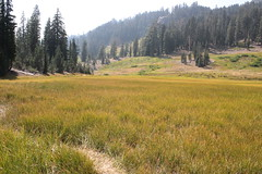 Meadow at Cold Boiling Lake (rozoneill) Tags: cold boiling lake lassen volcanic national park california hiking