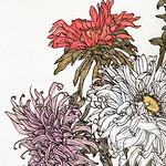Chrysanthemums by Julie de Graag (1877-1924). Original from the Rijks Museum. Digitally enhanced by rawpixel. thumbnail