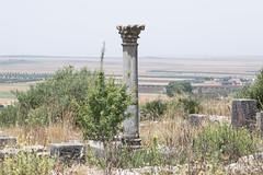 2018/07/09 12h37 ruines de Volubilis (Valéry Hugotte) Tags: 24105 antiquité maroc volubilis canon canon5d canon5dmarkiv colonne romain ruines fèsmeknès ma