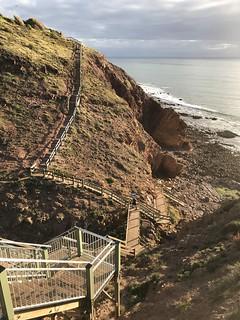 marion coastal walking trail-21