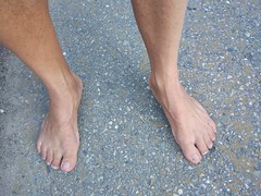 Descalzo en el Camino de Santiago (VIVE DESCALZO) Tags: descalzo barefoot barefooter barfus pie piedsnus 赤脚
