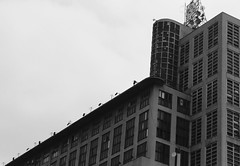 BIGZ (majamacanovic) Tags: architecture building bigz belgrade beograd art monochromatic blackandwhite blackwhite concrete lines sky overcast window