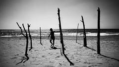 . (Mario M.) Tags: beach silhouette bw bnw bn