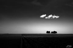 Artois_O618-11-2 (Mich.Ka) Tags: artois arbre campagne ciel cloud countryside extérieur hautsdefrance landscape nature nord nuage paysage sky tree absoluteblackandwhite