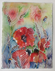 644 Poppies in the cornfield (Wuwus Bilder) Tags: getreide kornfeld ähren aquarell ownpainting rotemohnblumen