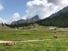 Alta Badia. (coloreda24) Tags: dolomiti altabadia dolomites 2018 fanes fanessenesbraies bolzano bozen altoadige italy